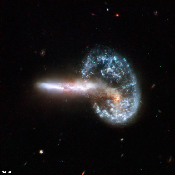 The Galaxy With Stronger Gravity Pulls The Weaker Galaxy Into Itself
